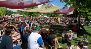 The Mud Show. A record setting crowd fills the stands for the popular Mud Show at the Bristol Renaissance Faire's closing day, Labor Day, 2013 Stock Photography
