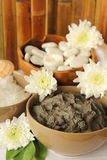 Mud spa. Spa with the salt, mud, rocks and flowers Royalty Free Stock Photography