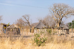 Mud straw and wooden hut with thatched roof in the bush. Local village in the rural Caprivi Strip, the most populated region in Na Stock Image
