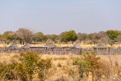 Mud straw and wooden hut with thatched roof in the bush. Local village in the rural Caprivi Strip, the most populated region in Na Stock Photography