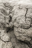 Mud texture Stock Photo