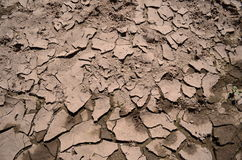Mud texture. Cracked and dried mud texture Royalty Free Stock Photos