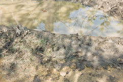 Mud texture. Or wet brown soil as natural Royalty Free Stock Photos
