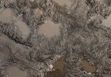 Mud Texture Royalty Free Stock Image