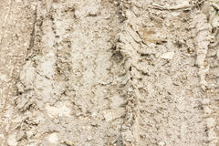 Mud with tire track texture Stock Photography