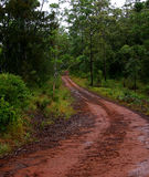Mud Track. Taken on a property at Ravenshoe near Cairns, Australia royalty free stock image