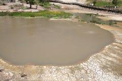 Mud volcano area,Yellowstone National Park stock photo