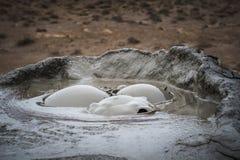 Mud Volcano at gobustan in Azerbaijan Stock Photography