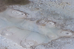Mud Volcano at Yellowstone National Park Wyoming USA Royalty Free Stock Photo