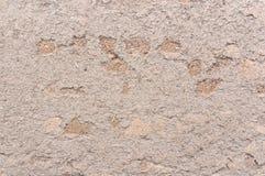 Mud wall Royalty Free Stock Photos