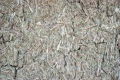 Mud wall texture. Detail, India Stock Photos