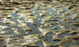 Mud and water. Mud holes filled up with water Royalty Free Stock Photo