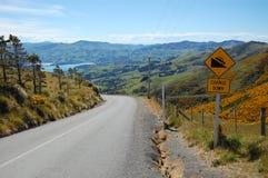 Mudança amarela do sinal de estrada para baixo Imagem de Stock Royalty Free