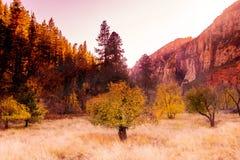 Mudança ocidental sul épico das árvores da queda do Arizona da cor, Sedona foto de stock