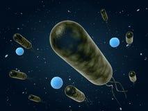 Mudanza de las bacterias Foto de archivo libre de regalías