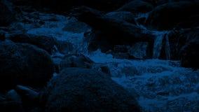 Mudanza a lo largo de Forest Stream At Night almacen de metraje de vídeo