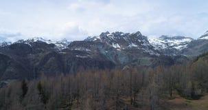 Mudanza para arriba del descubrimiento sobre abeto del pino o bosque de maderas del alerce y montaña nevosa en otoño Scape al air almacen de video