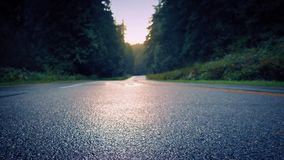Mudanza sobre Forest Road At Sunrise almacen de video