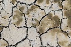 Mudcracks (lato) obrazy stock