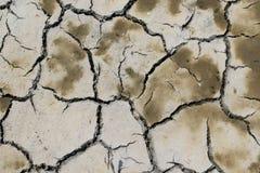Mudcracks (lato) Obrazy Stock