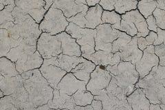 Mudcracks (Sommer) Lizenzfreie Stockfotos