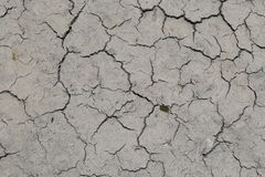 Mudcracks (summer) Royalty Free Stock Photos