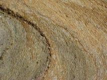 Muddy abstract patterns. Royalty Free Stock Image