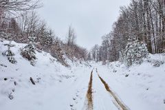 Muddy country road covered with snow Stock Image
