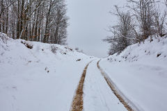 Muddy country road covered with snow Royalty Free Stock Photo