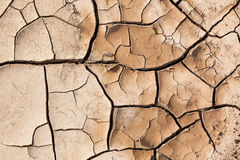 Muddy Cracked Earth Royalty Free Stock Photos
