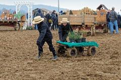 Muddy Day à la vente aux enchères du comté de Lancaster Images stock