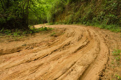 Muddy Dirt Road And Forest At Doi Pha Hom Pok Mountain In Thailand Stock Photography