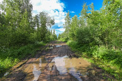 Muddy dirty road through forest with puddles Royalty Free Stock Photo