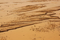 Muddy earth. After a heavy rain in the desert Stock Photography