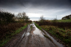 Muddy farm track Stock Image