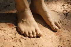 Muddy feets Stock Photography