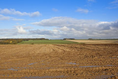 Muddy field in autumn Stock Photo
