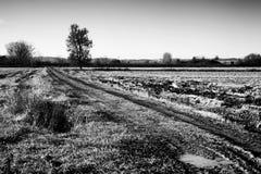 Muddy fields landscape Royalty Free Stock Image