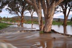 Muddy floodwaters Australia Stock Photography