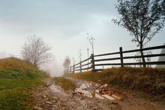 Muddy ground after rain in mountains. Extreme path rural dirt ro. Muddy ground after rain in Carpathian mountains. Extreme path rural dirt road in the hills. Bad Stock Photography