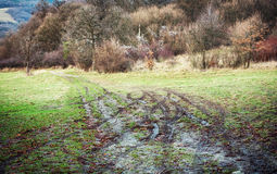 Muddy hiking path in the autumn nature Stock Image