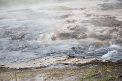 Muddy Mess. This was a stream leading from one of the hot springs at Yellowstone National Park that was very muddy. I loved the way the water looked as it flowed Stock Photo