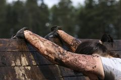 Muddy obstacle race runner in action. Mud run. Muddy obstacle race runner in action. The sports event is mud and obstacle course designed to test people`s stock image