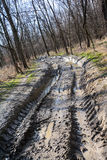 Muddy offroad track Stock Images