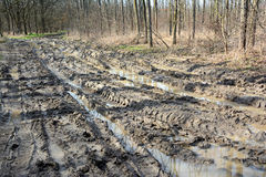 Muddy offroad track Royalty Free Stock Images