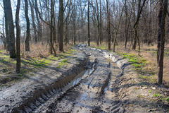 Muddy offroad track Stock Photography