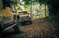 Muddy 4x4 Offroad Trail. Sport Utility Cars on the Muddy 4x4 Offroad Trail. Offroad Expedition stock photo