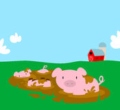 Muddy Pigs Royalty Free Stock Photo