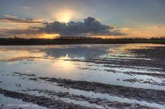 Muddy potato field. Sunrise over a potato field in winter, flooded after some weeks with lots of rain Stock Image