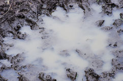 Muddy puddle in close up. Highfield Park  Levenshulme Lancashire Stock Photo